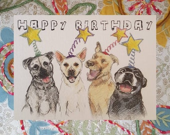 Pittie Stars Birthday Card