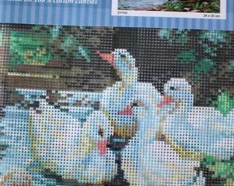 Duck canvas, ref 2111