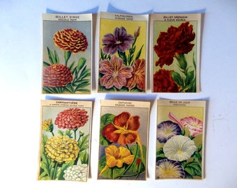 6 Vintage Flowers Seed  Labels. 6  French Kitchen Garden . Original Seed Labels , not reprints .F3.