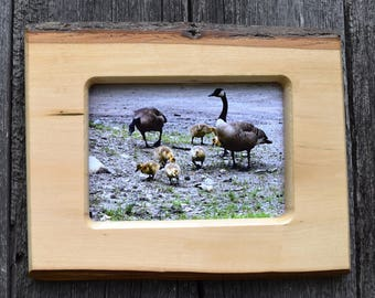 rustic wall decor /  5 x 7 in. photo frame /  live edge frame / handmade gift / Father's  day gift / country decor / wood picture frame .