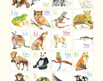Affiche abécédaire des animaux illustré Cathy Faucher illustration