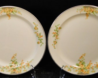 """TWO Taylor Smith Taylor Acacia Orange Floral Salad Plates 8 3/8"""" Set of 2 EXCELLENT!"""