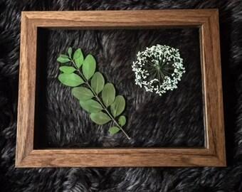"6"" x 8"" Framed Flora- Brown/Green/White"