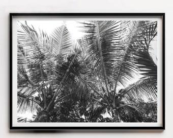 Horizontal Palm Tree Print, Horizontal Tropical Print, Black and White Palm Tree, Black and White Beach Print, Palm Tree Wall Decor