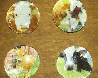 Cow Magnets - Farm Animal Magnets - Country Decor - Gift Idea