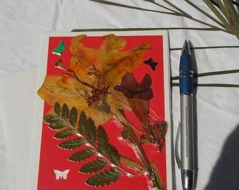 Pressed flower blank greeting card