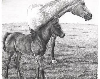 "8.5x11"" OR 11x17"" Print of Mother Horse and Colt"