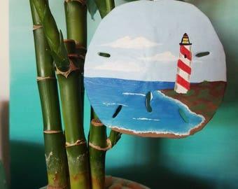 Lighthouse point Sand Dollar
