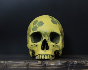 The Queen Bee - Distressed Black & Yellow Life Size Realistic Faux Human Painted Skull Replica / Art / Ornament / Home Decor