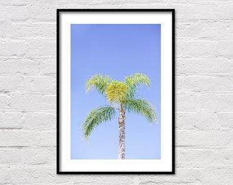 Sunny Palm Print Wall Art, Palm Tree Wall Decor, Tropical Palm Leaves, Palm Leaf Print, Palm Trees Print, Palm Wall Print, Palm Leaf Poster