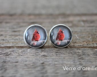 Earrings studs in stainless on glass cabochon with male cardinal bird