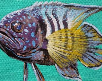 Tropical Strip Fish