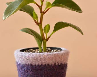 Felted Wool Planter- sml
