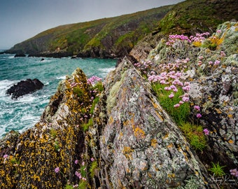 Fine Art Photography Print - The Ballycotton Cliffs in County Cork, Ireland