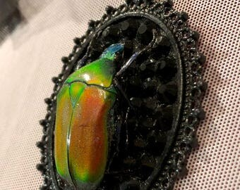 Colorful Flame Beetle on Black Rhinestones in Black Gothic Web Pendant