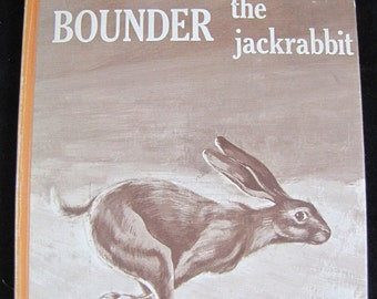 Bounder The Jackrabbit // first edition // 1966 vintage