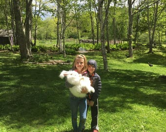 white German Angora rabbit fur