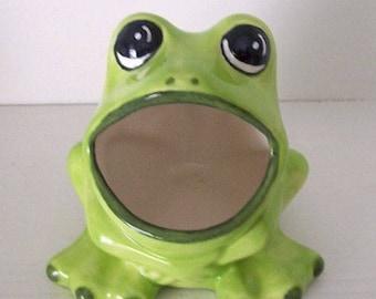 Ceramic Frog Sponge Holder, Scrubby Holder, Brillo Pad Holder, Sink  Organizer, Frog