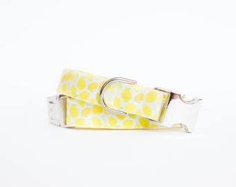 Lemony Lemonade Summer Dog Collar