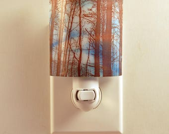 Fused Glass Night Light