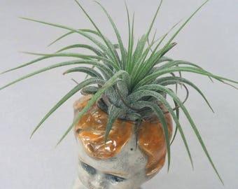 Doll Head Air Plant or Mini Vase, ceramic doll head vase, air plant vase