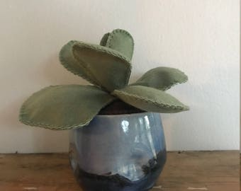 Fake Green Leafy Plant in Blue Gradient Modern Pot // Ombre design vase // Succulent Home Decor Hand Stitched Felt Cactus // Handmade Gift