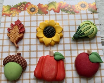 """Fall Buttons, """"Harvest Happenings"""" by Buttons Galore, Style FA101, Carded set of 6, Shank Back Buttons, Pumpkin, Squash, Acorn, Apple & More"""