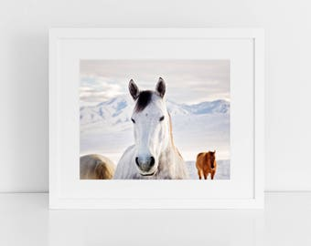 Rustic Horse Photograph, Winter art in Color, Physical Horse Print, Snow Wall Art