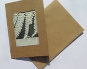 Small original hand printed botanical mini print ACEO Presented on a blank greetings card Nature art gift by Stef Mitchell. Fern fronds