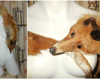 Vintage Fox Fur Stole 1930s Full Body Red Fox Stole Face Head 52 in long Art Deco Flapper Fox Fur Wrap some shedding + dirt on lining