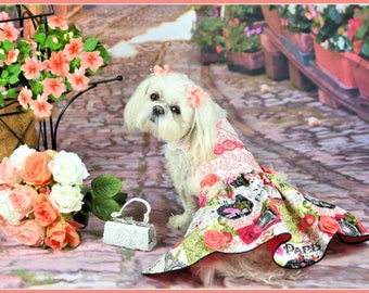 SUMMER:  Bonjour Paris Dog Dress