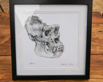 Framed Prints - Gorilla Skull