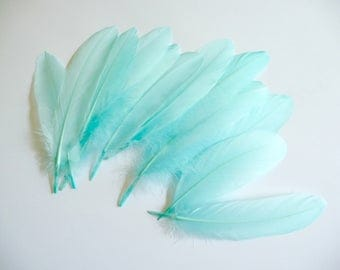 Aqua Blue Goose Feathers Dyed Millinery Goose Satinettes Trim for Hats Fascinators Crafts Costumes Set of 12