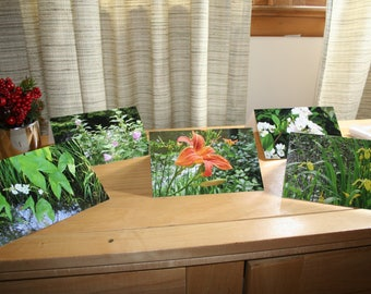 Notecards - Wildflower Notecards, Tawny Daylilies, Multiflower Roses, Wild Rose, Iris, Arrowleaf, Swamp Mallow, Canal, flowers, Swamp
