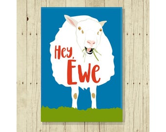 Hey Ewe Magnet, Refrigerator Magnet, Sheep Gift, Gift Under 10, Sheep Pun, Small Gift, Farm Animal Gift, Puns, Ewe, 4-H Gift