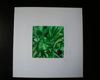 Ladybird in the grass, Original encaustic wax art greetings card