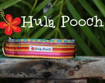 """Dog Collar """"Hawaiian Rainbow"""" -  Medium, Large, Wide, Adjustable // FREE SHIPPING"""