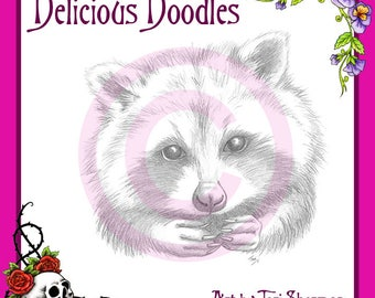 Greyscale Raccoon Sketch, Illustration, Digital Stamp, Colouring Page, Coloring Page