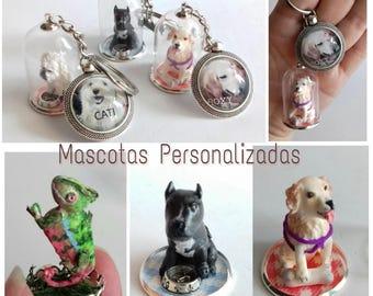 Custom pets