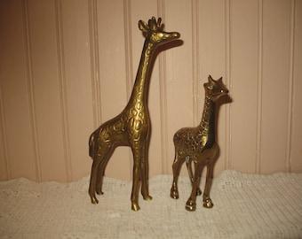 Giraffes in brass (2) animals