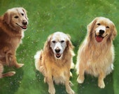 Private Listing for Liz 3 Golden Retrievers