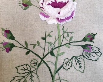 Rose rose, broderie, motif de fleurs brodées, motif de broderie, broderie motif, motif de broderie