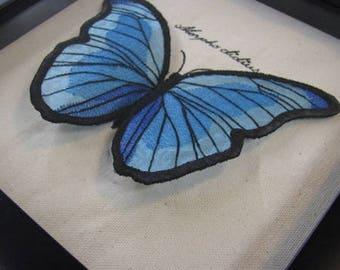 Organza Morpho Butterfly Curiosity Specimen Shadow Box