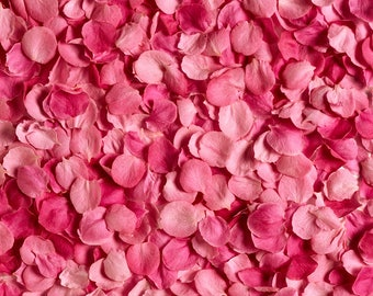 Pink petal Backdrop - flower floor, wedding, girl, birthday - Printed Fabric Photography Background W1260