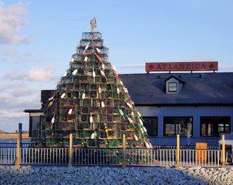 Lobster pots and buoys Christmas Tree, 2017, Cohasset, South Shore, photo art, holiday art, Boston, Massachusetts, archival signed print