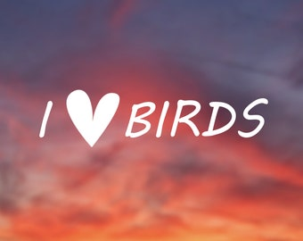 I Love Birds vinyl sticker for the Birder, Bird watcher, and bird lovers out there, Decal for Car, Window, Computer, etc