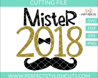 Mister 2018 Svg, Mustache Svg, New Years Svg, New Years Eve Svg, Cutting Files Svg, Cut Files, Cricut Files, DXF Files, EPS, PNG