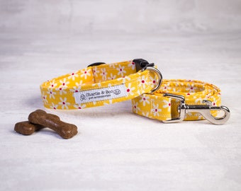 Dog collar and lead - Dog collar and leash - Yellow dog collar and lead - Collar and lead for girls - Puppy collar and lead - Puppy gift