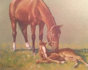 "C W Anderson Lithograph Vintage Horse Print Mare Foal ""The New Arrival"" 665 Chestnut Mare NOS"