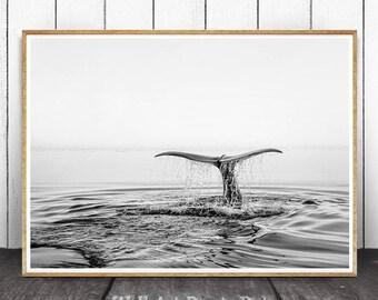 Ocean Print, Whale Tail Print, Ocean Wall Art, Coastal Wall Decor, Black And White, Beach Print, Beach Wall Art, Modern Minimalist, Whale